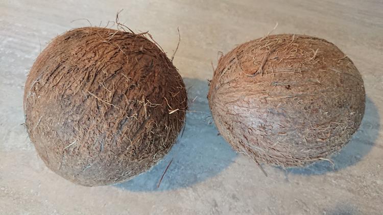 olej kokosowy przechowywanie